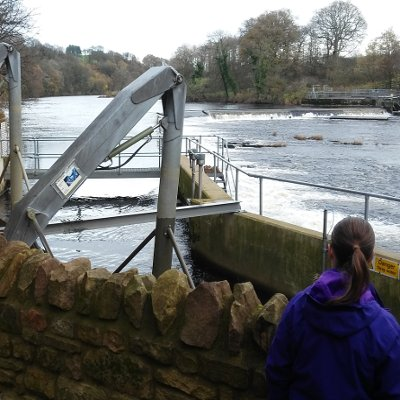 Nicola at Halton Hydro