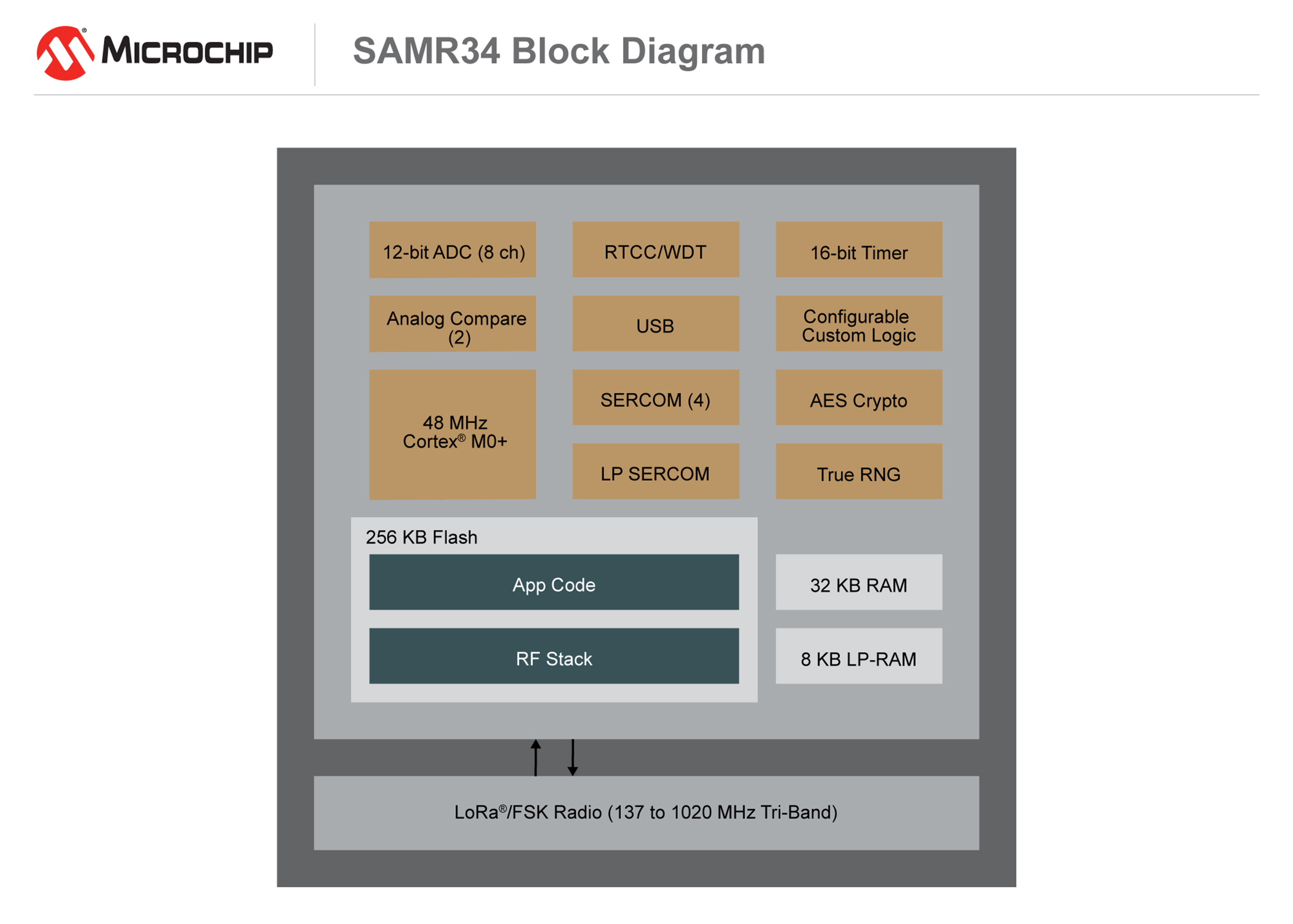 SAMR3536_Block_Diagram