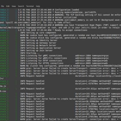 The Things Network v3 Docker Build